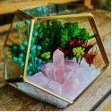iubire si cuart roz - terariu cristale energetice 7 chakre terariu iubire si cuart roz 3