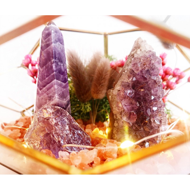 amethyst tribute - terariu terariu cristale terariu amethyst tribute | terariu ametist | terariu cristale ametsit 2