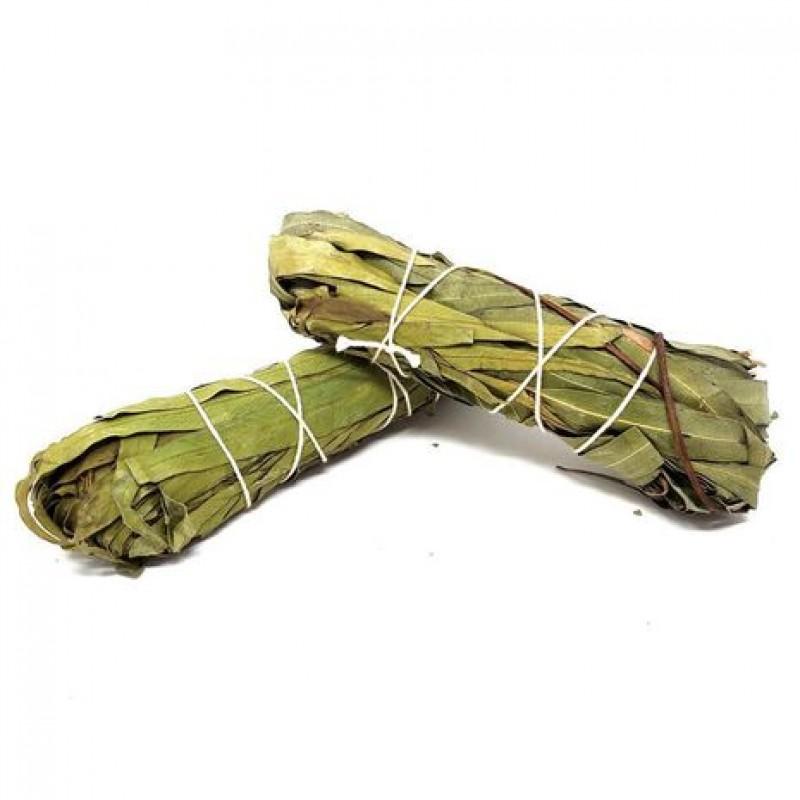 buchet eucalipt - curatare energetica purificare chakre buchet natural de eucalipt 2