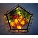 a magic home terariu cristale energetice 7 chakre terariu magic home pentru protectia casei 6