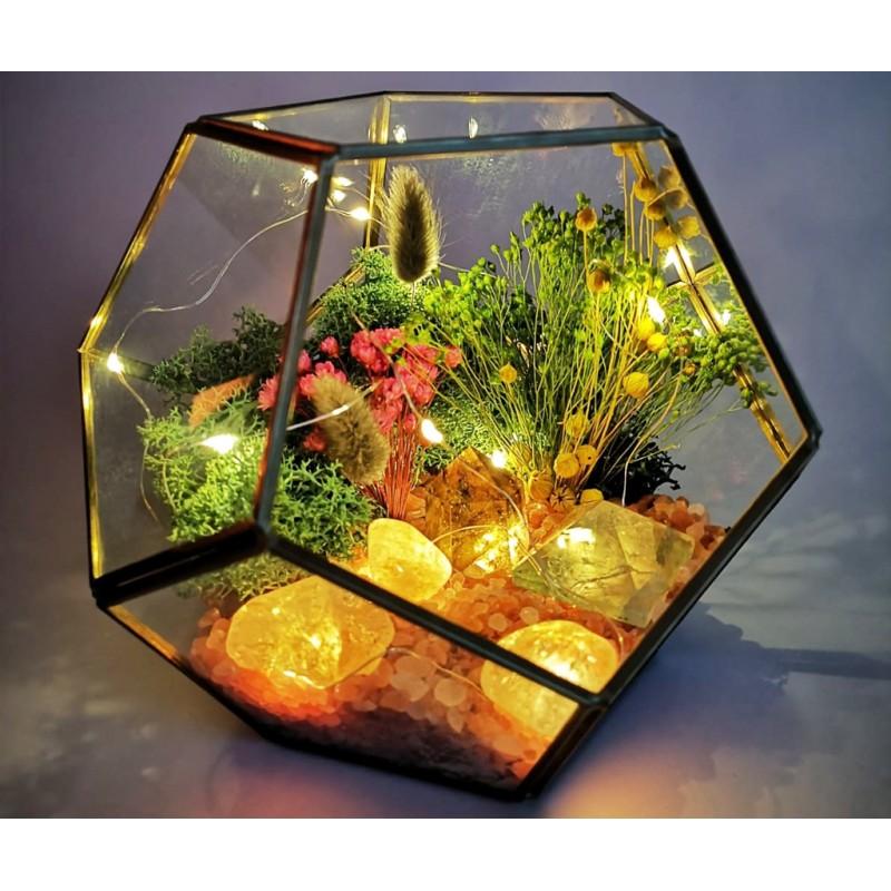 a magic home terariu cristale energetice 7 chakre terariu magic home pentru protectia casei 2